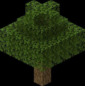 PhaseOpticShell_Tree.png